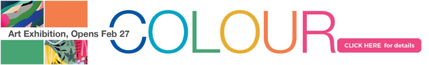 Colour Shop Banner