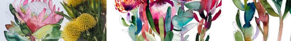 Artworx Geelong Watercolour