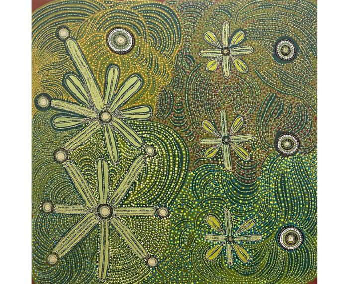 Rachael Stevens Indigenous Artwork for sale