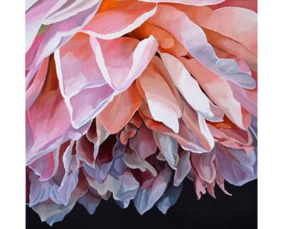 Pink Jenny Fusca