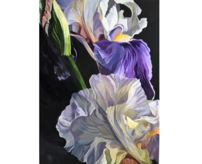 Purple Jenny Fusca