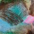 Jo Dyer Colour Sprig XI Detail2