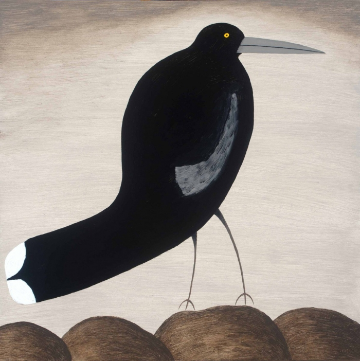 Currawong With Curved Tail Study 2016 Oil On Board 30 X 30 Cm Dean Bowen Low Res
