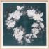 Paule Marrot Fleur Couronne Teal 07