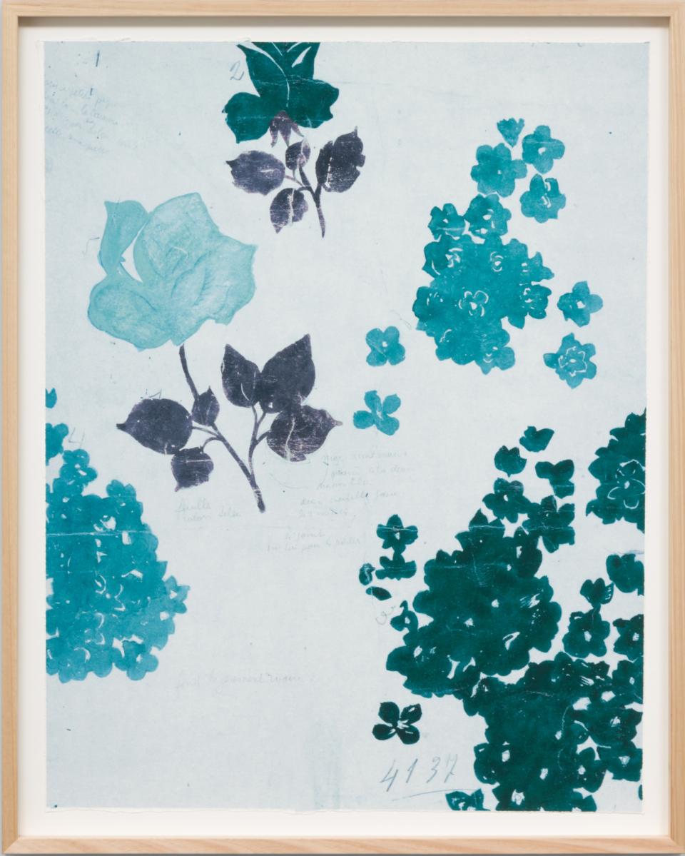 Paule Marrot Fleurs Roses Bleu Rawframe High Res