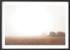 Michelle Schofield foggy autumn mornings Black Frame