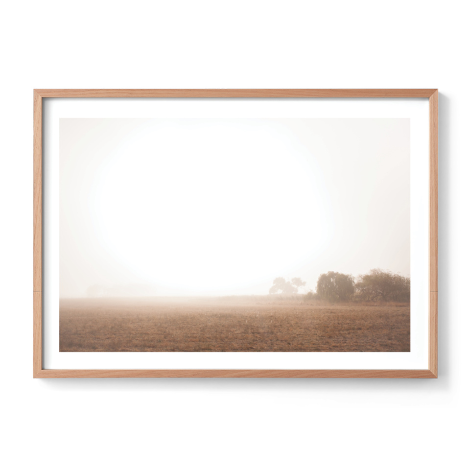 Michelle Schofield foggy autumn mornings Raw Frame