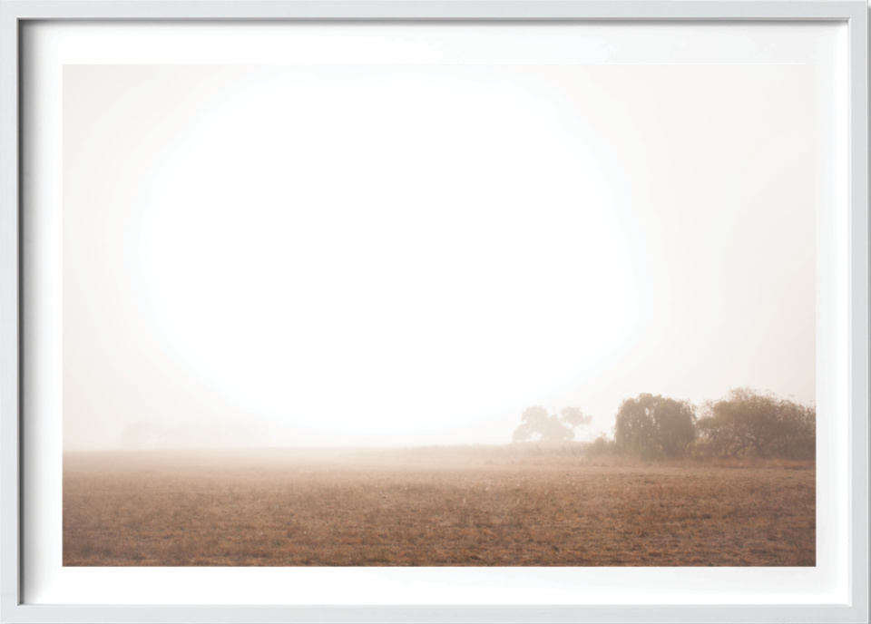 Michelle Schofield foggy autumn mornings White Frame