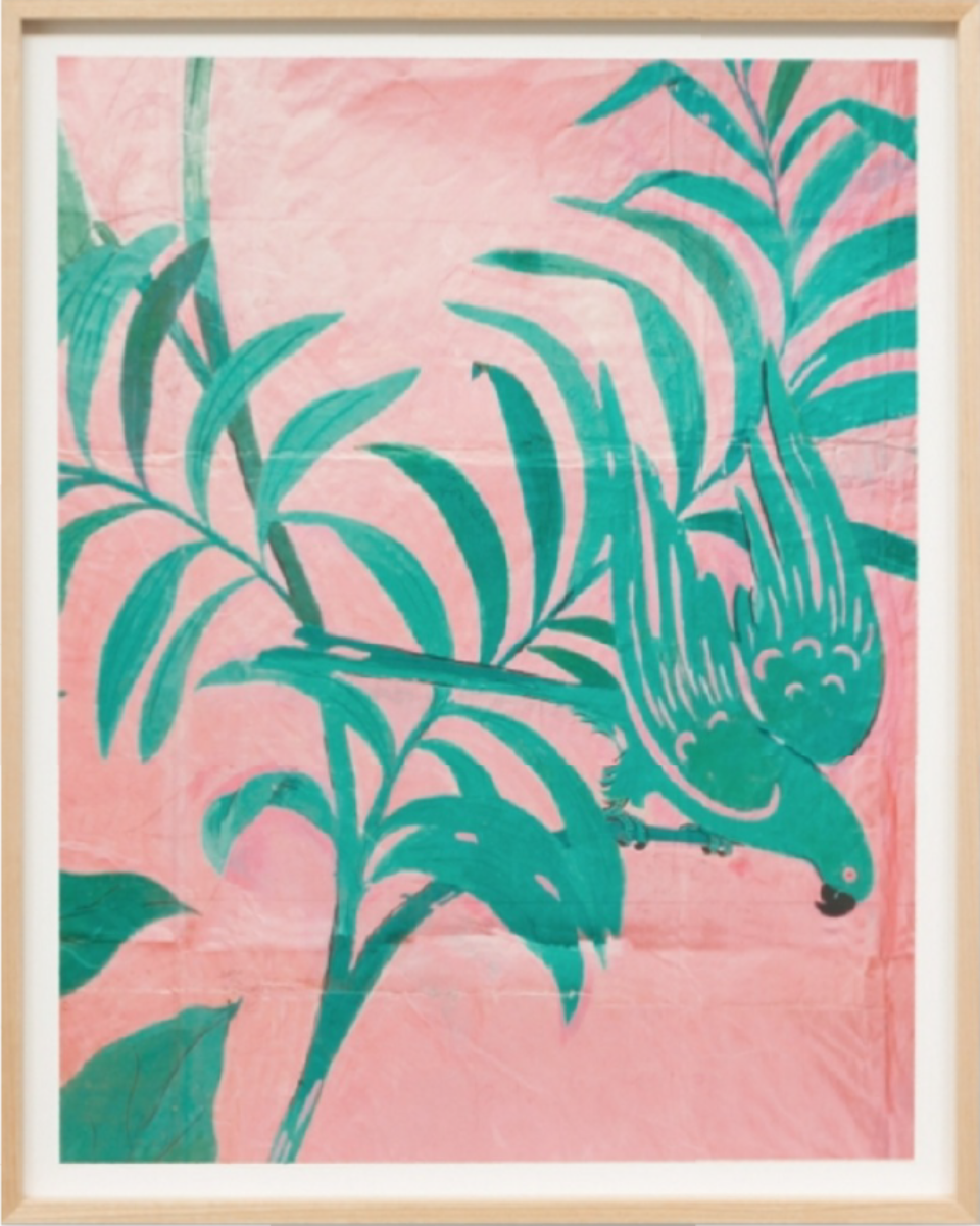 Paule Marrot Les Perroquets Rose 2 26