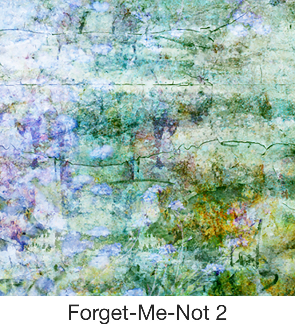 Susan Trigg Scarf Forget Me Not