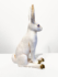 Jenny Rowe White Hare 3