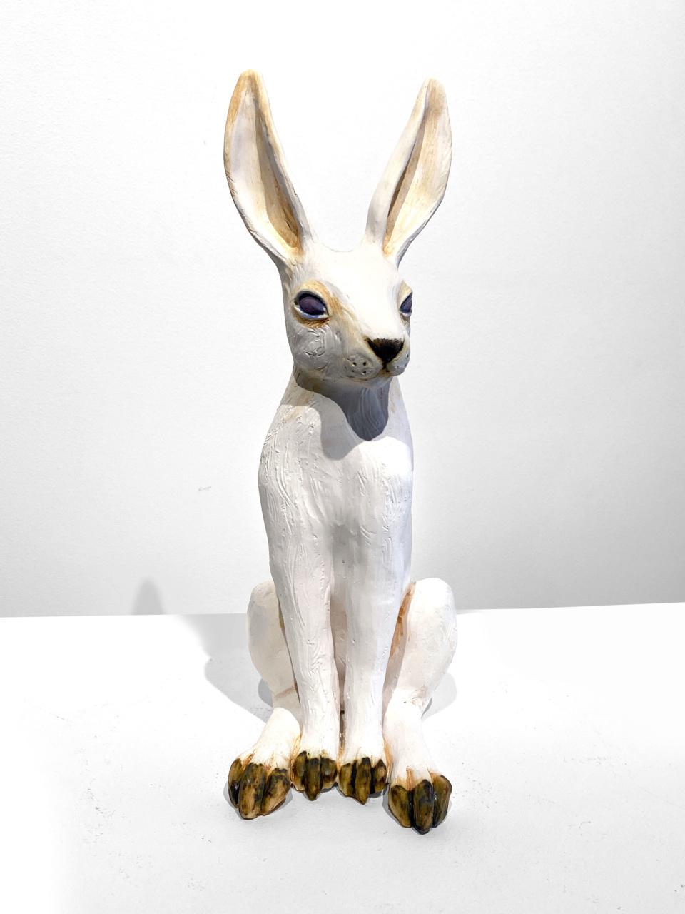 Jenny Rowe White Hare 2