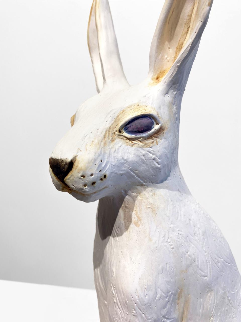 Jenny Rowe White Hare 4 2