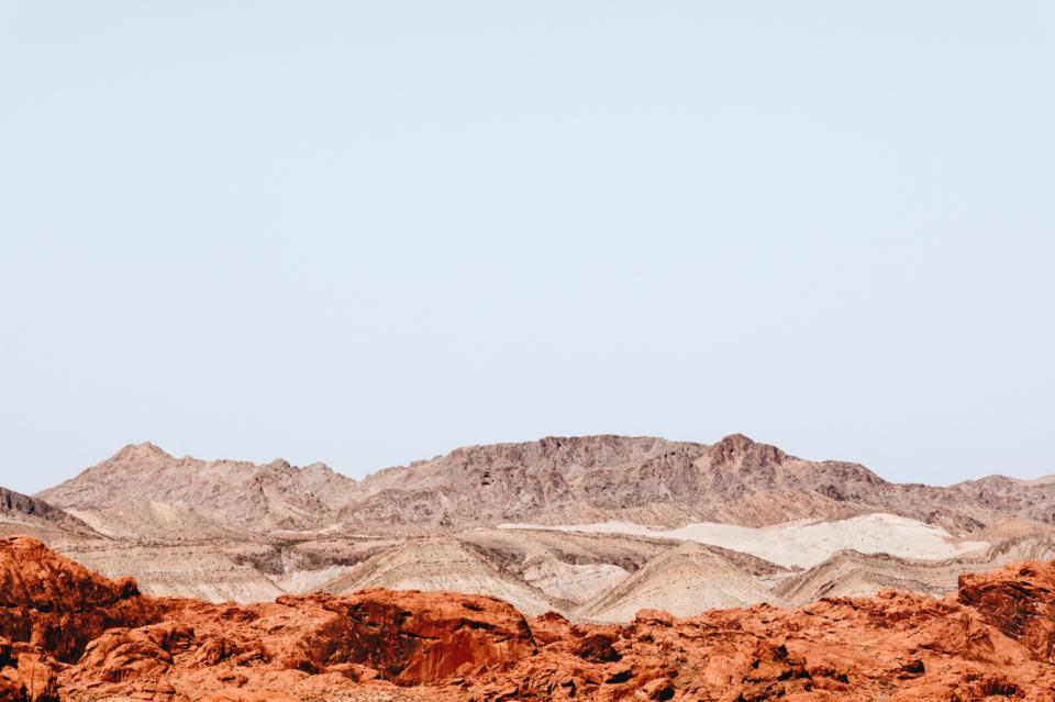 Maegan Brown Martian After Form Copy