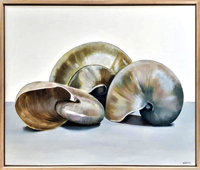 Laura White Mother Of Pearl Nautilus