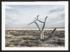 Craig Holloway Murray Sunset National Park 02 Framed Black