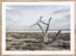 Craig Holloway Murray Sunset National Park 02 Framed Raw