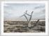 Craig Holloway Murray Sunset National Park 02 Framed White