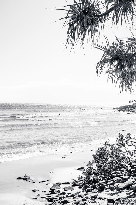 Michelle Schofield Noosa Sunrise Photographic Print