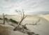 Craig Holloway Yanerbie Sand Dunes