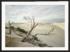 Craig Holloway Yanerbie Sand Dunes Framed Black