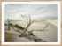 Craig Holloway Yanerbie Sand Dunes Framed Raw