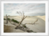 Craig Holloway Yanerbie Sand Dunes Framed White